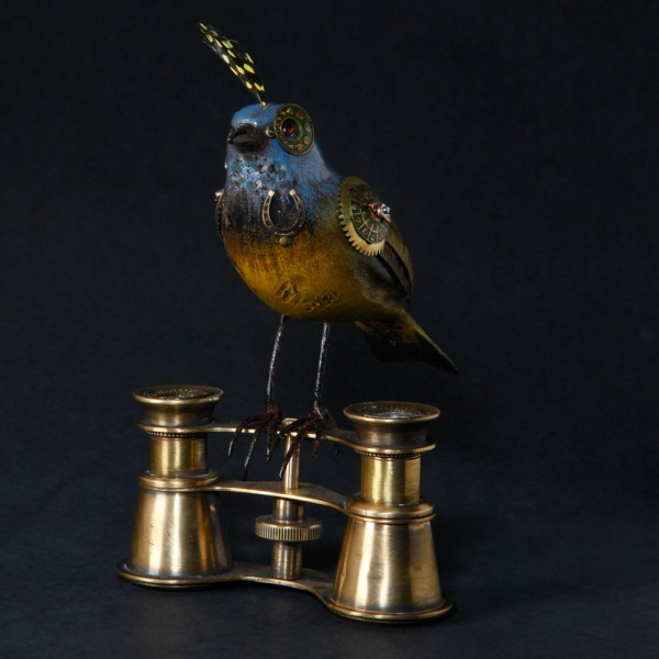 Small Bird on Binoculars