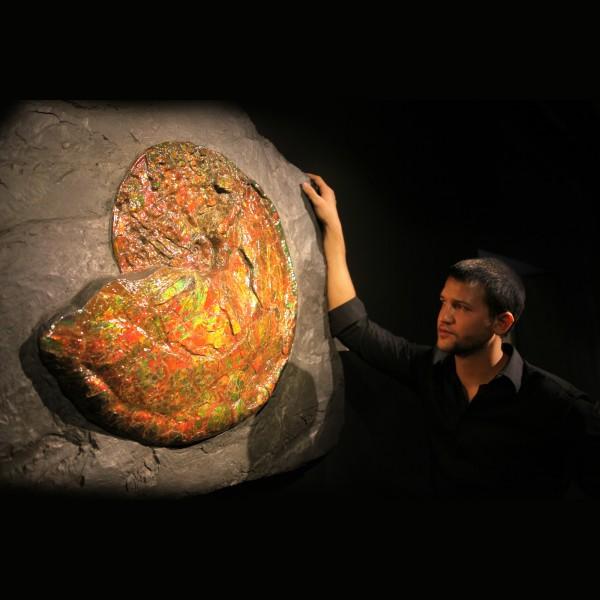 Canadian Ammonite 02_CF17_961