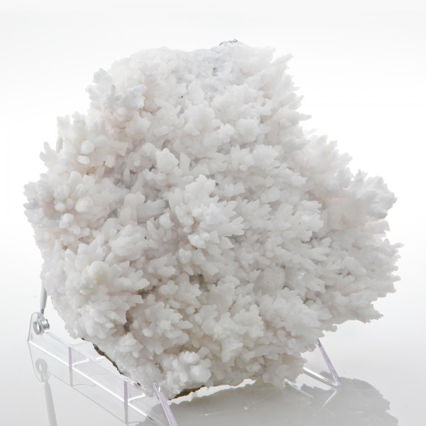 White Calcite Tree Crystals