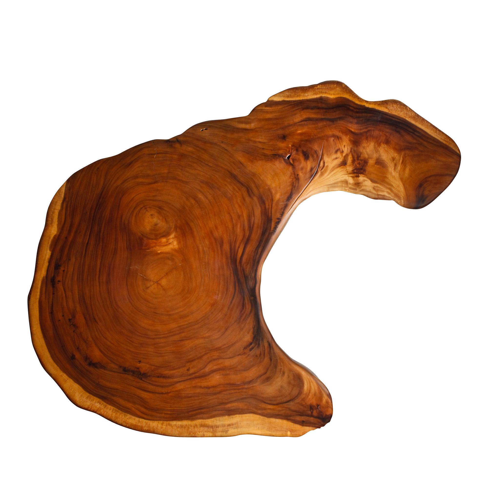 Saman Natural Wood Art - ES1