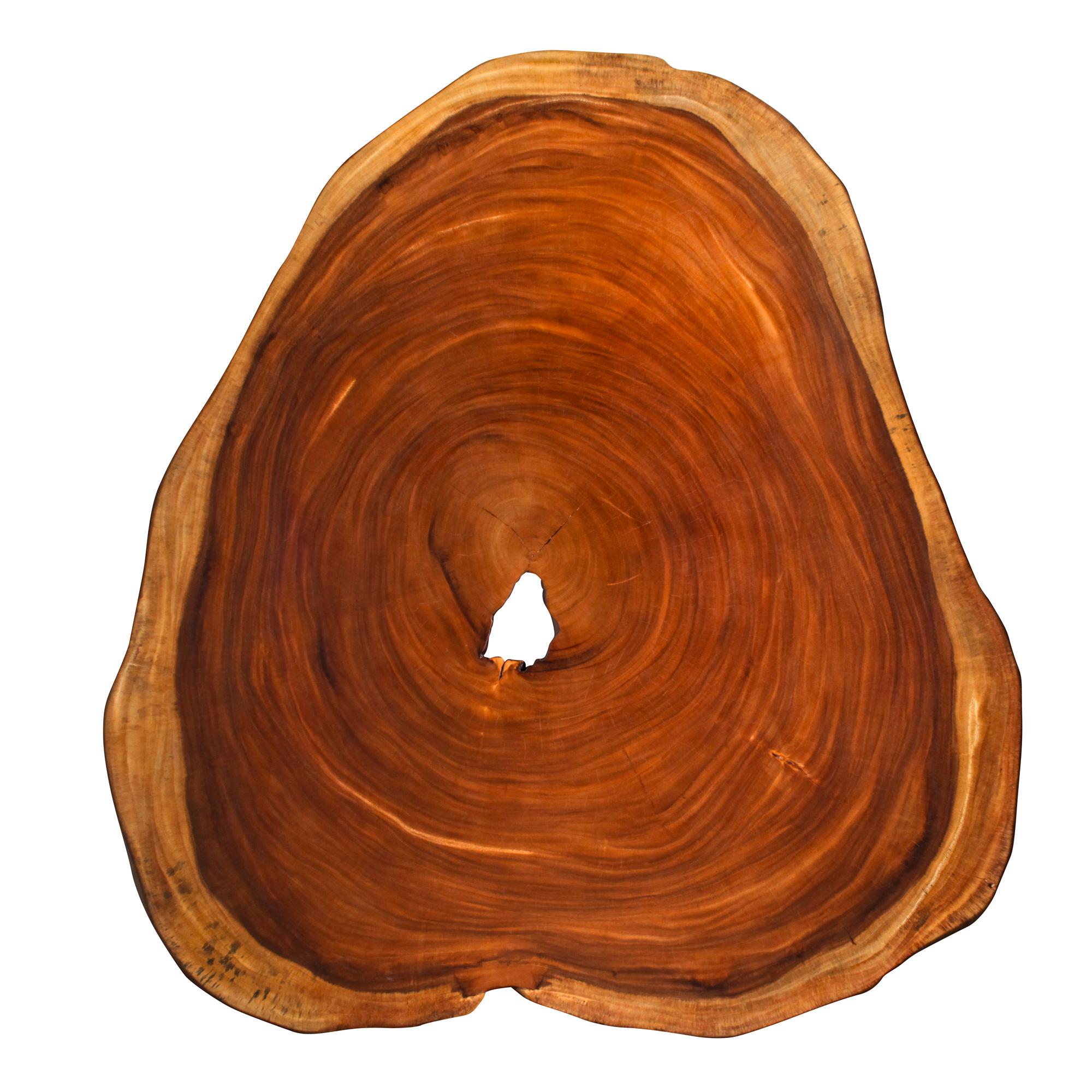 Saman Natural Wood Art - R1