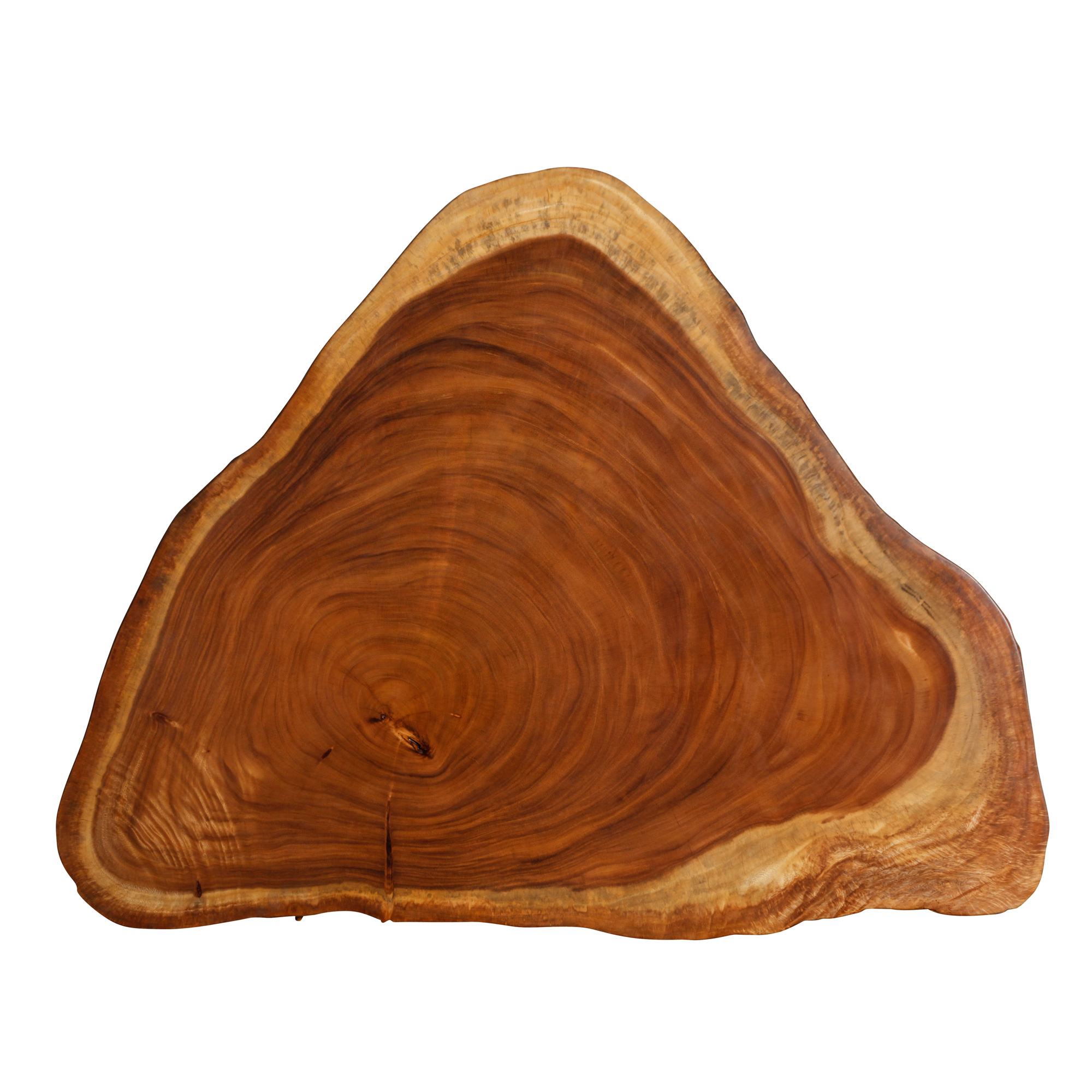 Saman Natural Wood Art - R10