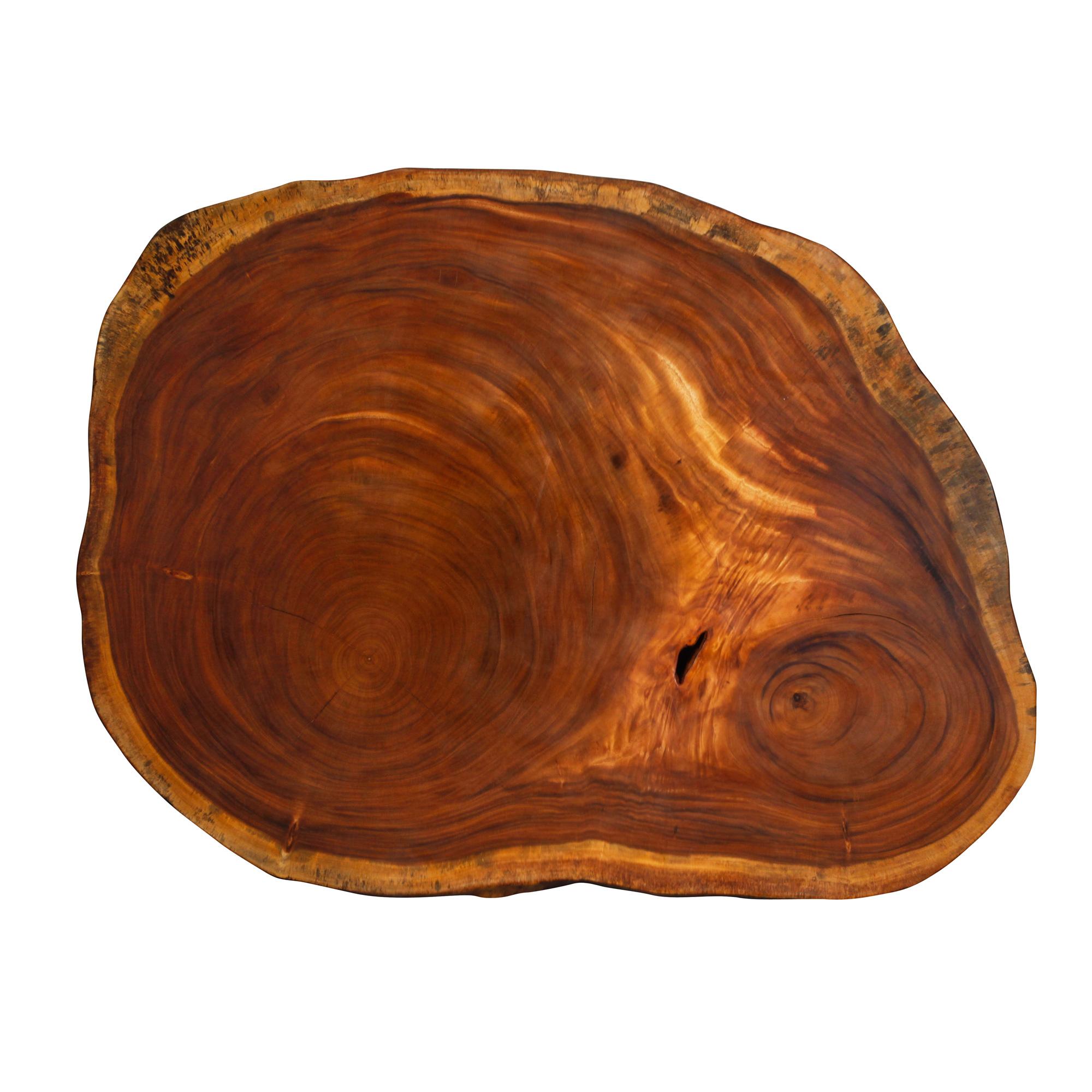 Saman Natural Wood Art - R2