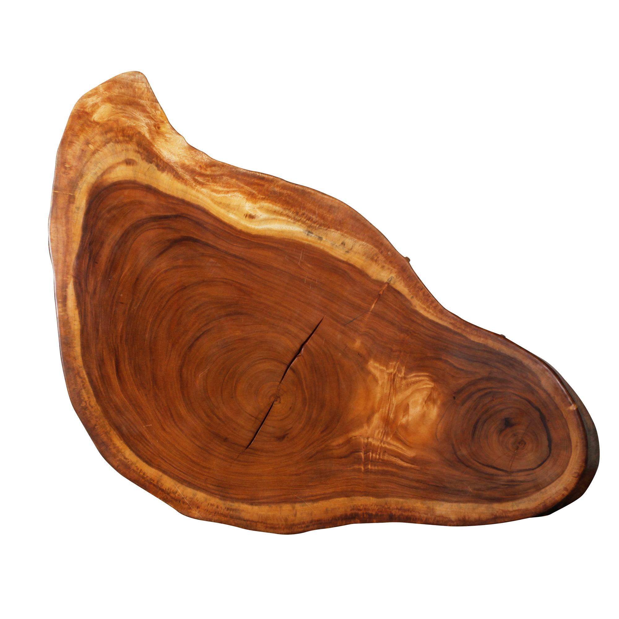 Saman Natural Wood Art - R27