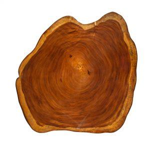 Saman Natural Wood Art - R3