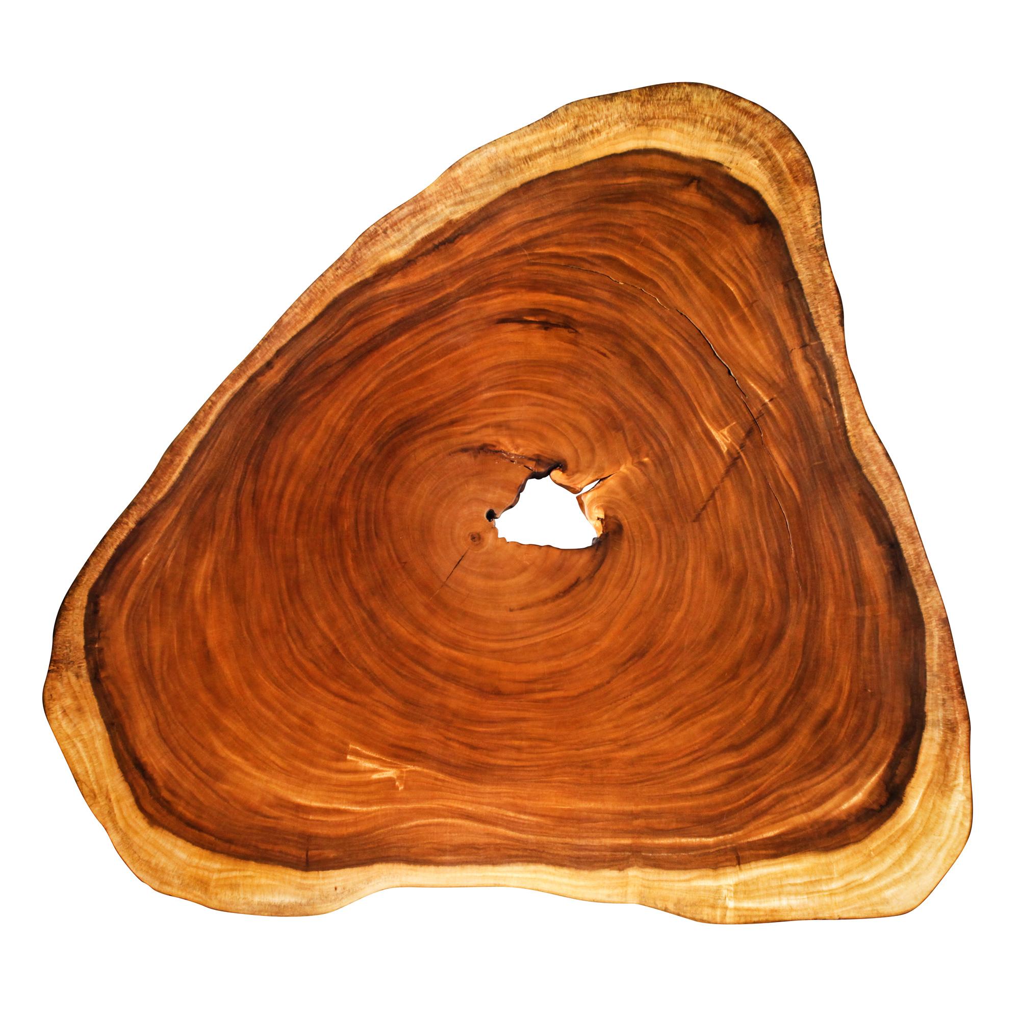 Saman Natural Wood Art - R7