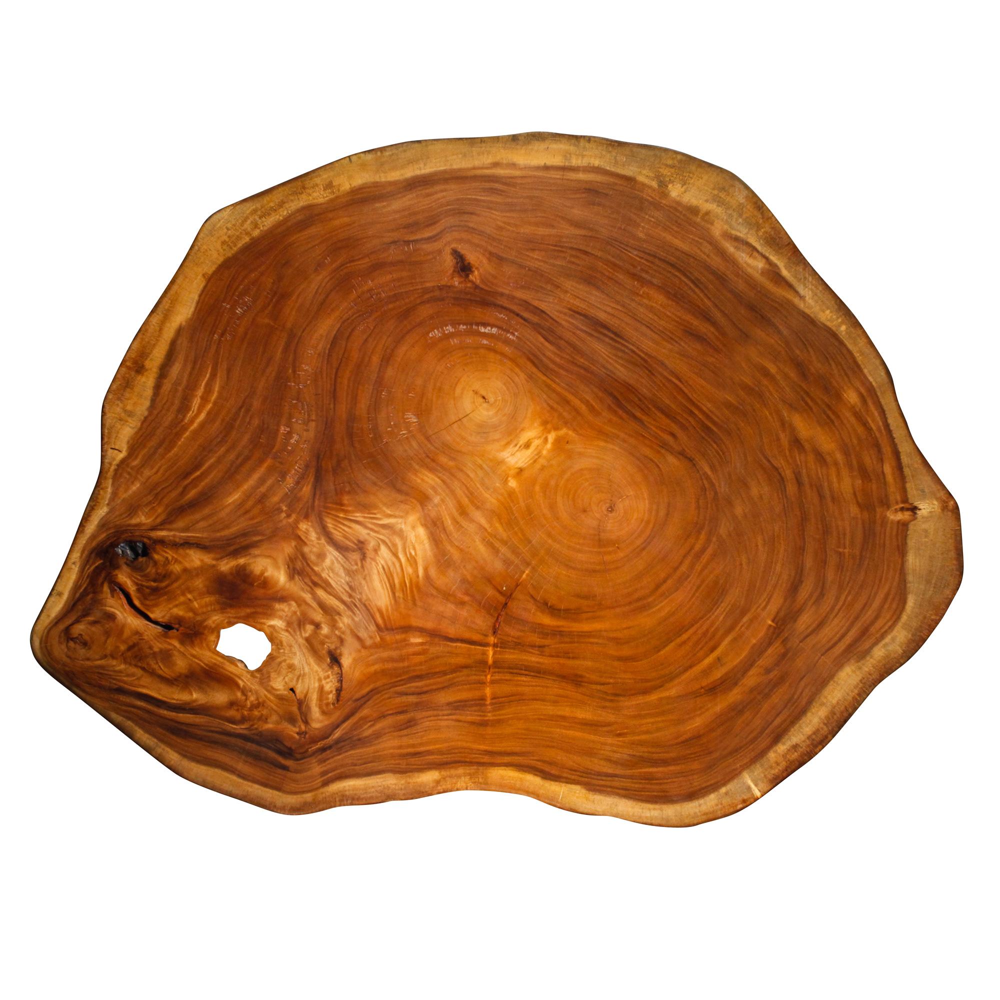 Saman Natural Wood Art - R8