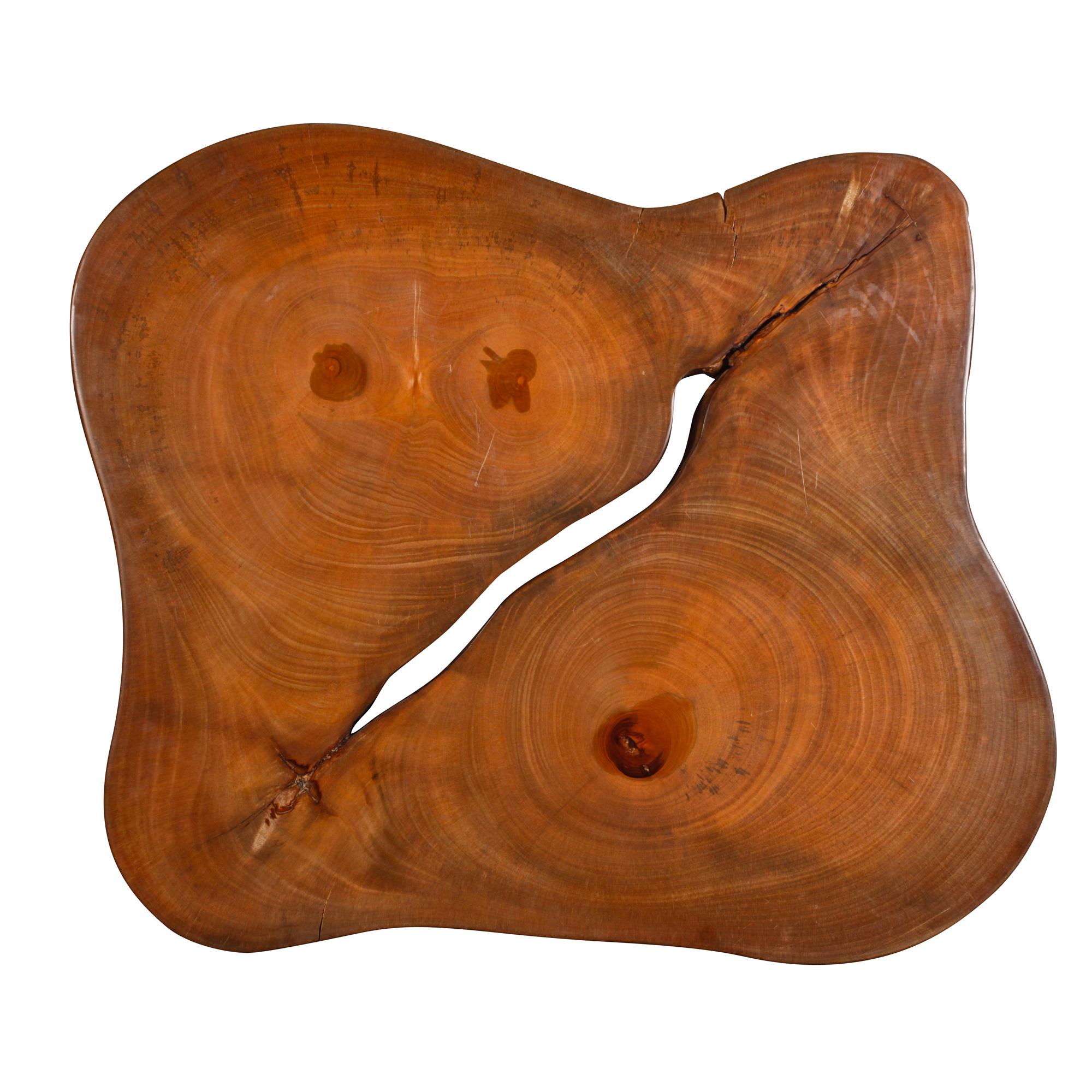 Saman Natural Wood Art - R93
