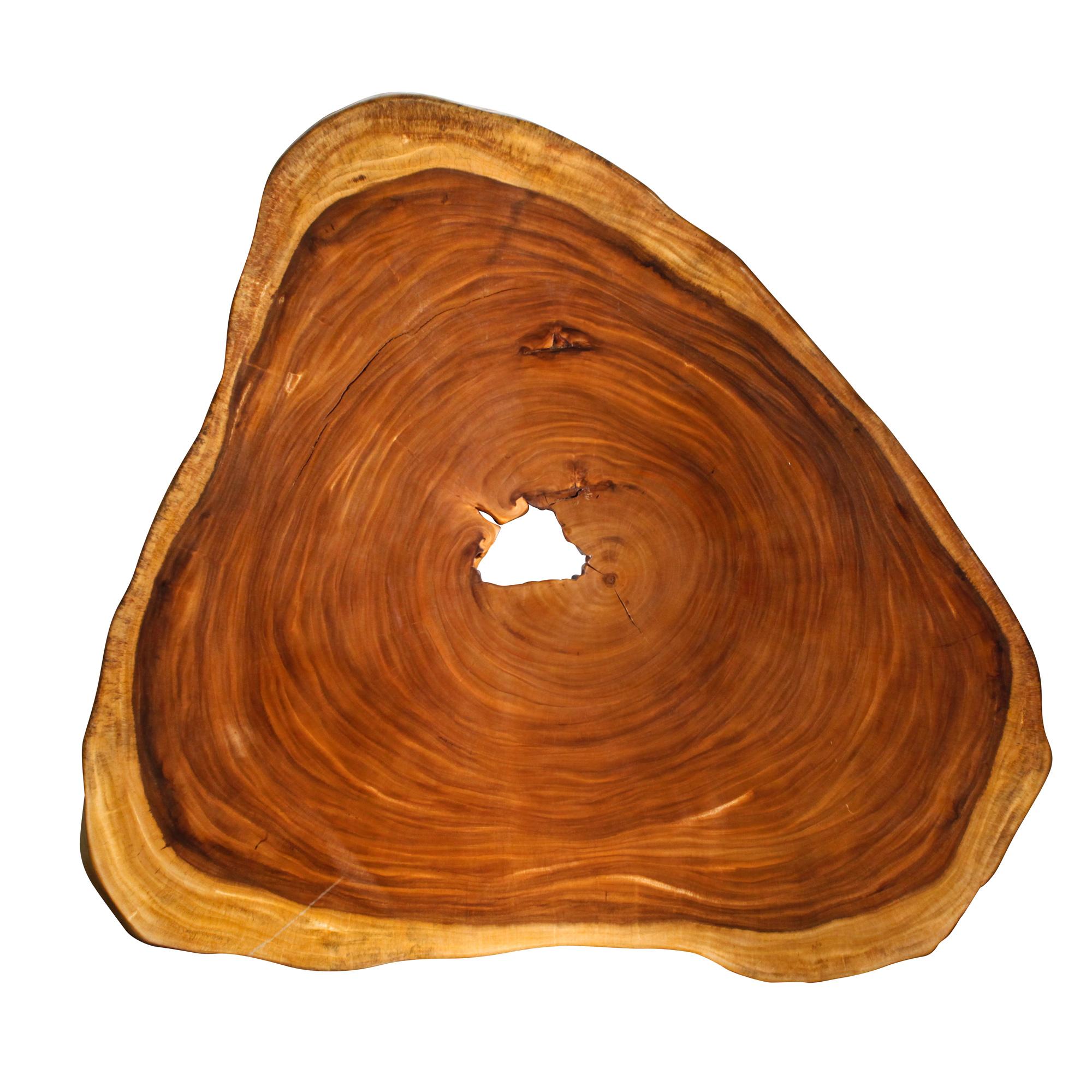 Saman Natural Wood Art - RG7