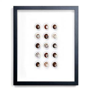 16x20 Regal Snails
