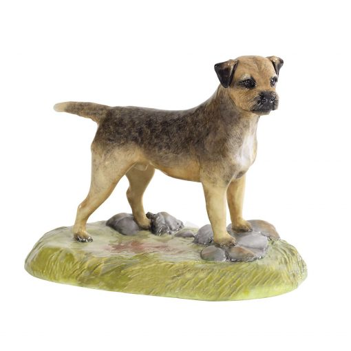 Border Terrier - Royal Stratford Dog